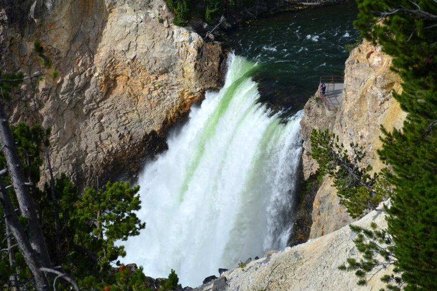 Yellowstonski slap